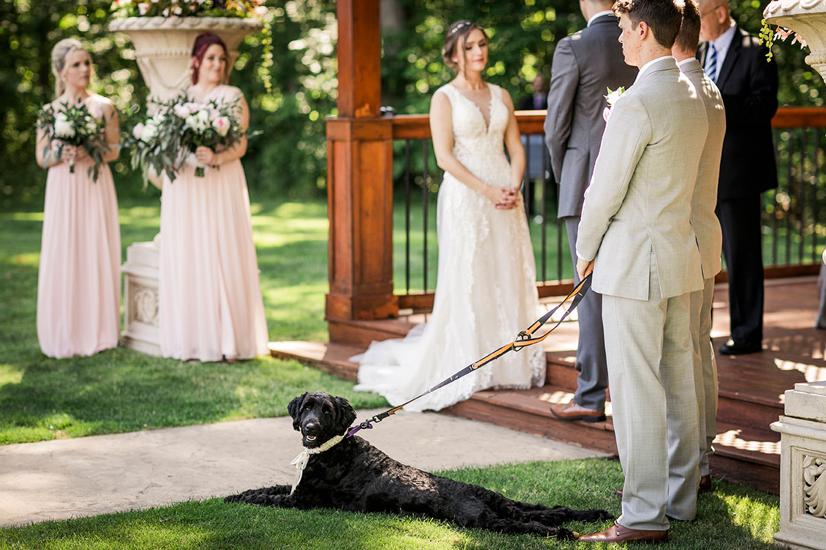 Crosswinds Wedding Ceremony Pets